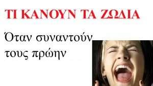 ti-kanoun-ta-zodia