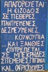 ksanthies11